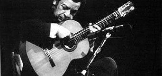 il chitarrista flamenco agustin castellon